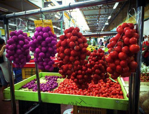 Tradizioni natalizie, i pomodori fucsia di San Cesario arrivano al mercato di Lecce