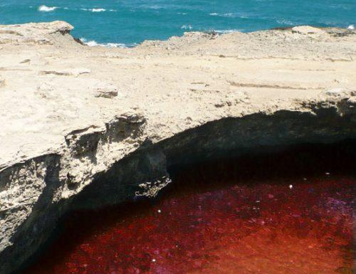 La Grotta della Poesia di Melendugno si colora di Rosso, un'atmosfera natalizia totale