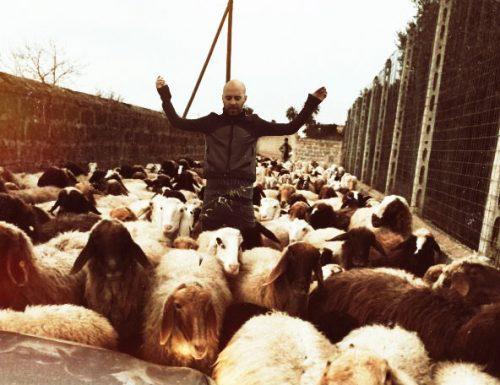 Un concerto tra le pecore, così Giuliano Sangiorgi è entrato nel Guinness dei Primati