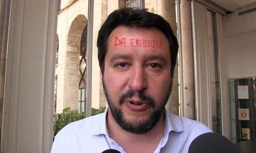 """Xylella, l'Ue ha deciso: """"Basta ulivi, eradicare il cervello di Matteo Salvini"""""""