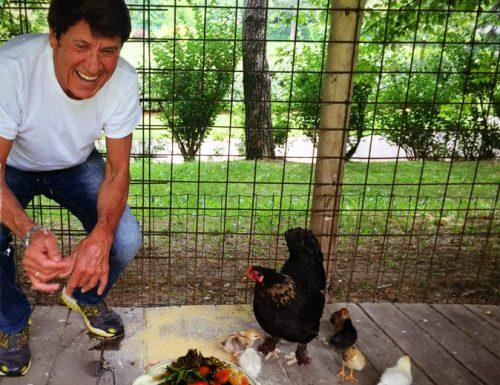 Morandi esagera con la salentinità sui social, alle galline solo frise di Trepuzzi