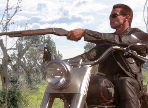 L'UE ha mandato un altro Terminator indietro nel tempo per distruggere la xylella