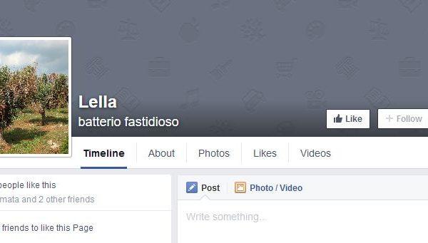 """L'ennesimo mistero del caso Xylella: """"Perchè su facebook si fa chiamare Lella?"""""""
