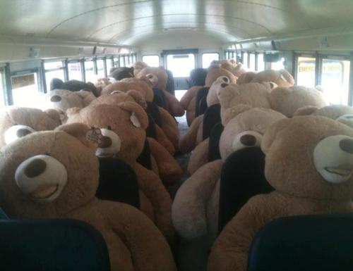 A Torre dell'Orso il più grande raduno mondiale di orsi di Torre dell'Orso