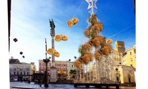 Xylella, nuovo allarme focolaio sul fastidioso albero in Piazza Sant'Oronzo