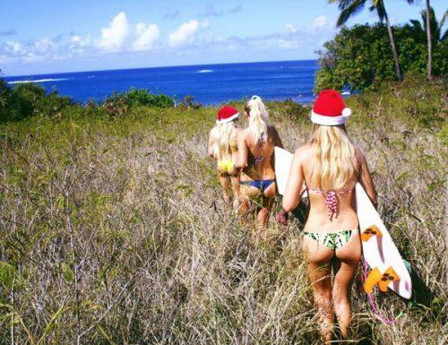 Nuove conferme e indiscrezioni, quest'anno Babbo Natale sarà Piccione