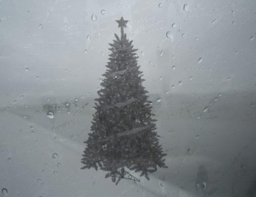 A San Cesario di Lecce l'Albero di Natale fatto di umidità più grande del Mondo