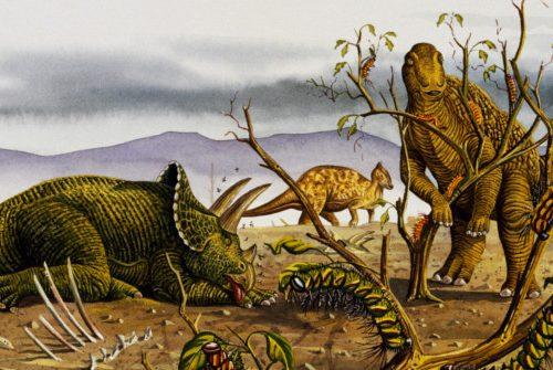 Nuovo studio: Nessun Asteroide, l'umidità leccese spazzò via i dinosauri