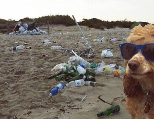 "Installazione artistica sulla spiaggia di Gallipoli, l'esperto: ""Mancu li cani"""
