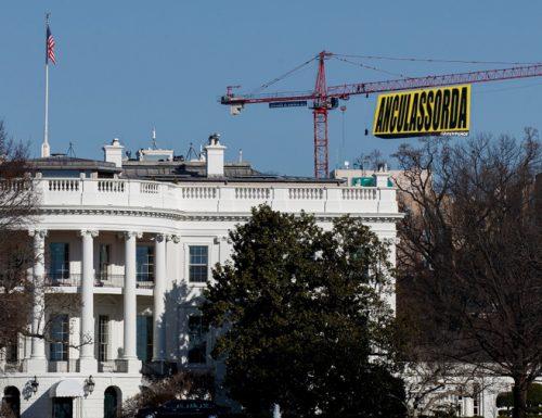 Washington: Attivisti salentini danno il benvenuto a Donald Trump